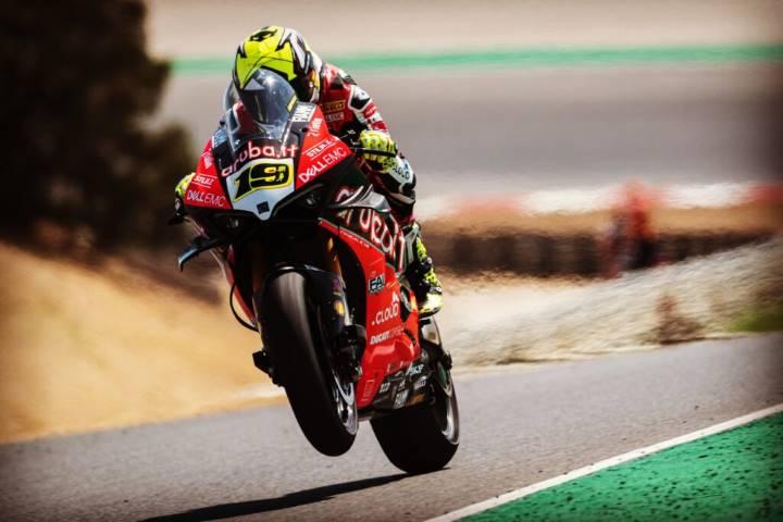 Bautista SBK Ducati